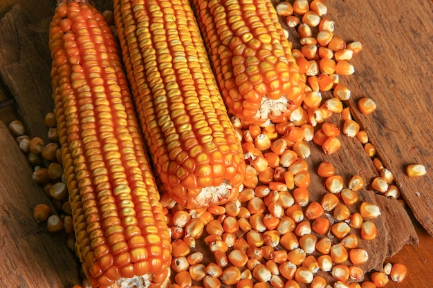 Top view dried corn on wood