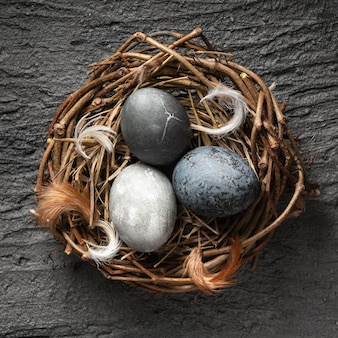 Top view of easter eggs in bird nest made of twigs with feathers