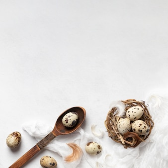 Top view of easter eggs in bird nest with feathers and copy space