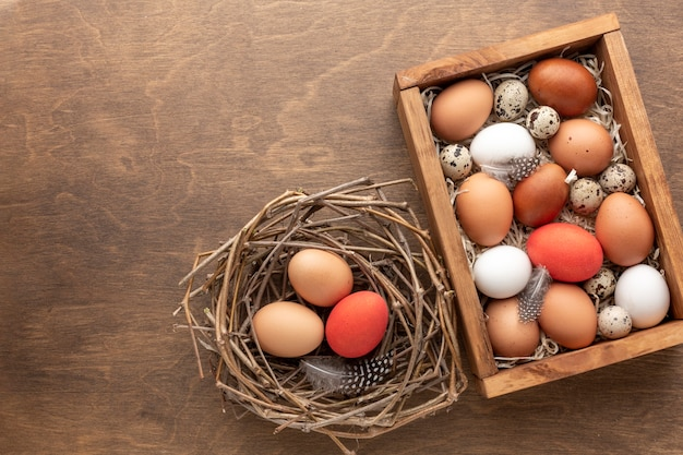 Top view of easter eggs in a box with feathers and next