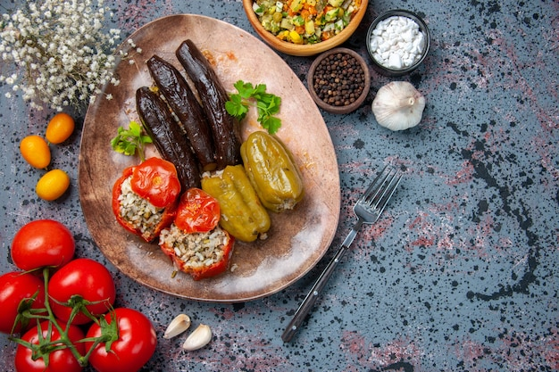Top view eggplant dolma with cooked tomatoes and bell-peppers filled with ground meat inside plate, dish food meal colors