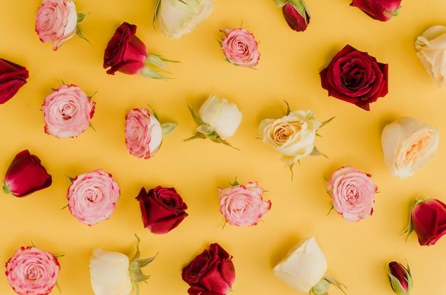 Top view of elegant roses