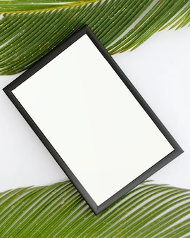 Top view of empty frame and palm leaves on white surface