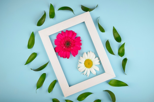 Top view of an empty picture frame with pink color gerbera flower with daisy and ruscus leaves on blue background