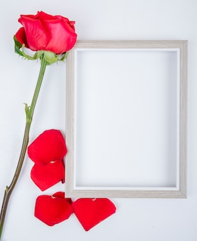 Top view of an empty picture frame with red color rose on white background with copy space