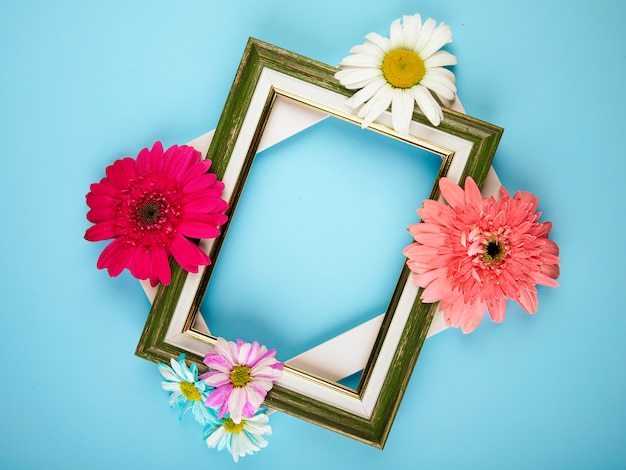 Top view of empty picture frames with colorful gerbera flowers with daisy on blue background