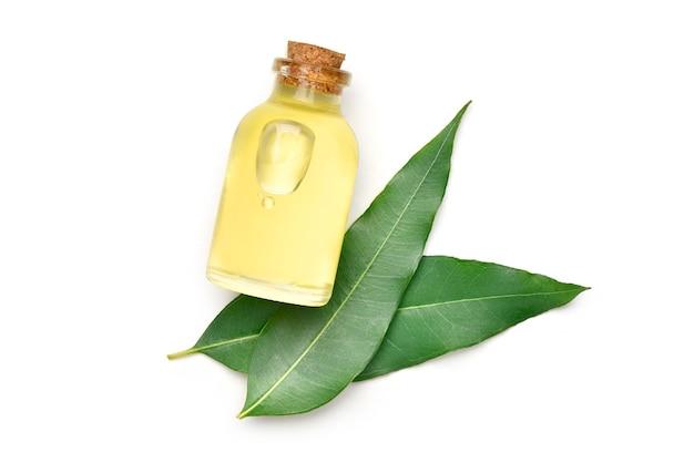 Top view of eucalyptus essential oil