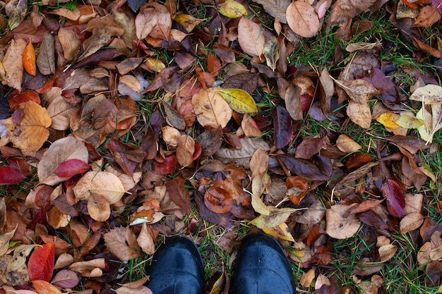 Top view of feet in rubber shoes on background of withered fallen brown autumn leaves with copy space