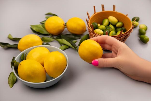 Vista superiore della mano femminile che tiene un limone giallo fresco con i limoni su una ciotola con le foglie con i limoni isolati su una parete bianca