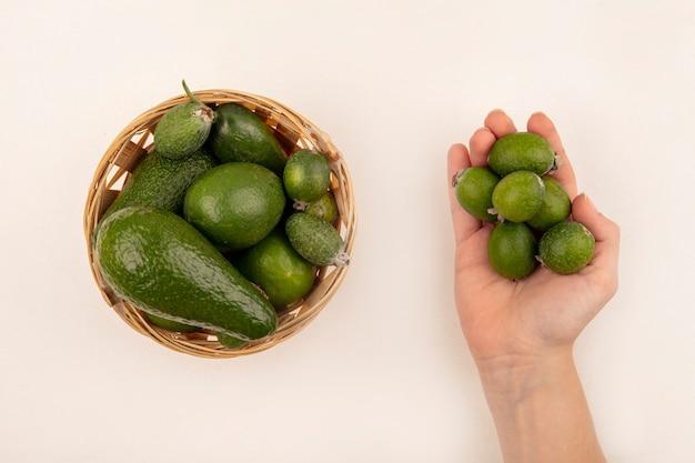 Vista superiore della mano femminile che tiene feijoas verdi con feijoas e avocado su un secchio su una superficie bianca