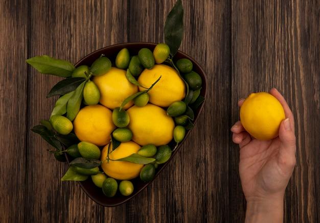 Vista dall'alto della mano femminile che tiene un limone con una ciotola di limoni e kinkan su una parete di legno