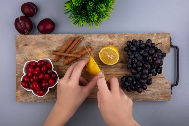 Top view of female hands cutting lemon with knife  cornel berries and grape  cinnamon on cutting board and pluots  plant on gray background