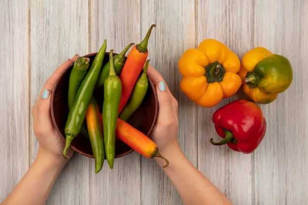 Top view of female hands holding a bowl of peppers with bell peppers isolated on a grey wooden surface