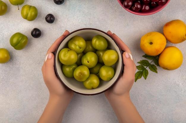 Vista dall'alto delle mani femminili che tengono una ciotola con prugne ciliegia verde con pesche dolci con prugnole su sfondo bianco