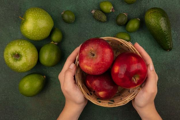 Vista dall'alto delle mani femminili che tengono un secchio di mele rosse fresche con lime, feijoas e mele verdi isolate su una superficie verde