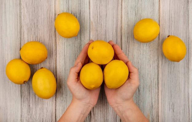 Vista dall'alto delle mani femminili che tengono i limoni freschi con i limoni isolati su una superficie di legno grigia