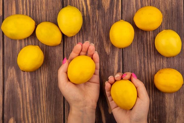 Vista dall'alto delle mani femminili che tengono i limoni freschi con i limoni isolati su una parete di legno