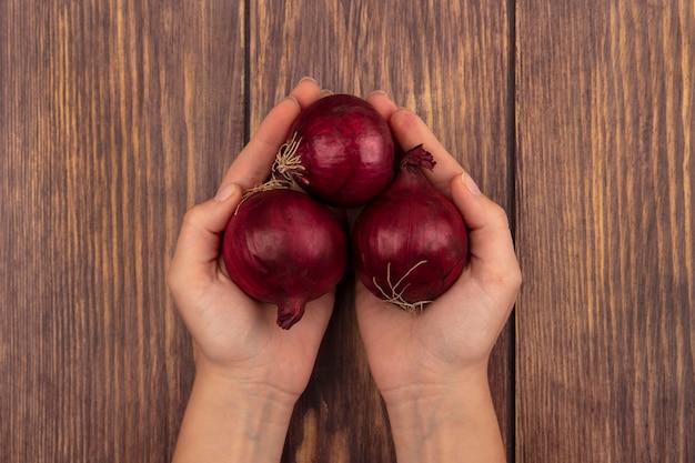 Vista dall'alto delle mani femminili che tengono le cipolle rosse fresche su una superficie di legno