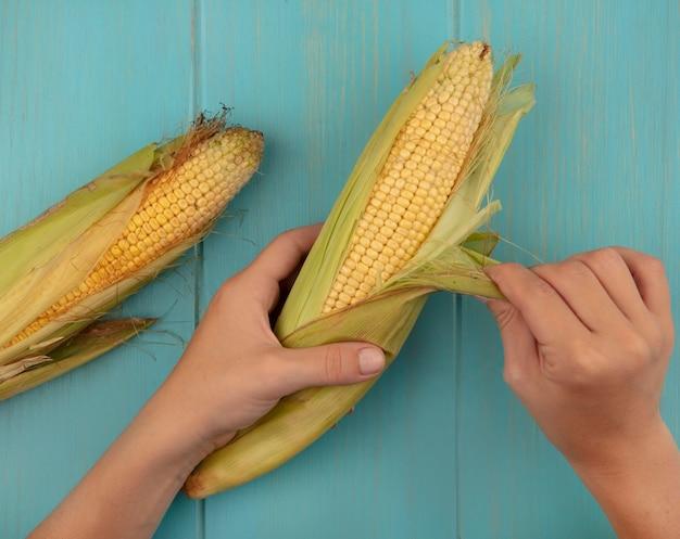 Vista dall'alto delle mani femminili sbucciare mais fresco su un tavolo di legno blu