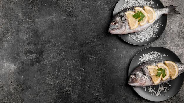 Vista dall'alto pesce copia spazio