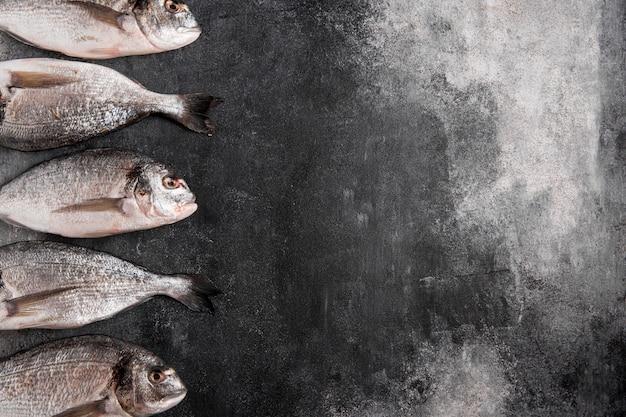 Вид сверху на рыбу с одной стороны с копией пространства для ингредиентов