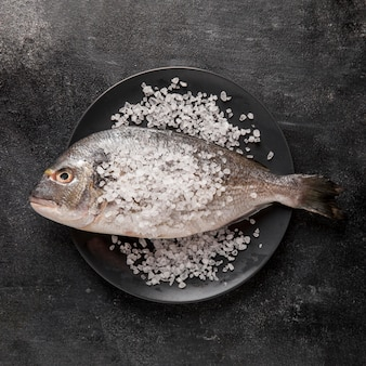 Top view fish with sea salt