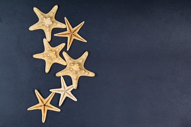 Top view of five starfish on black background.