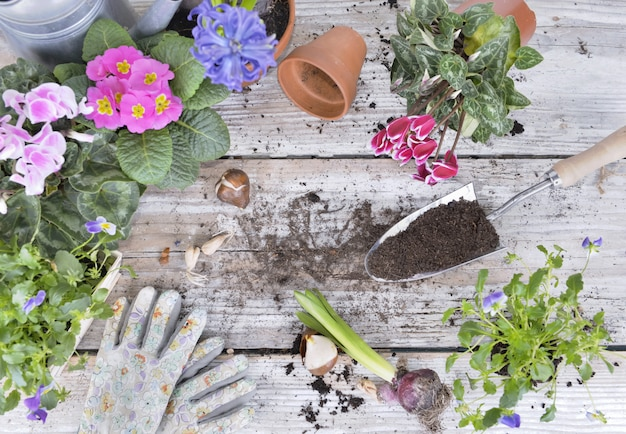 Top view on flower pot and a shovel full of soil on a gardening table
