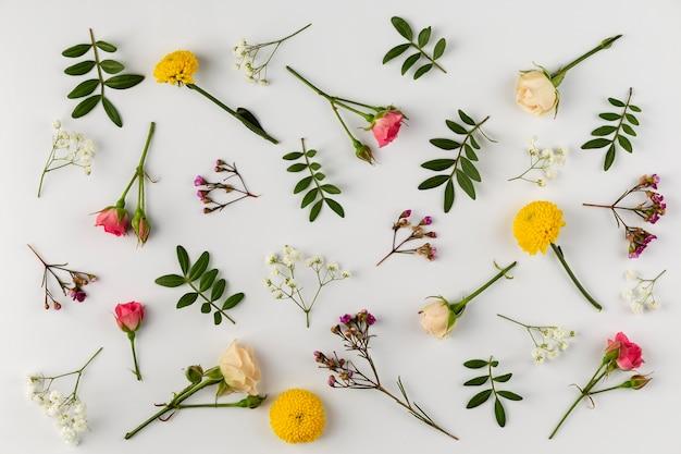 テーブルの上のビューの花のコレクション