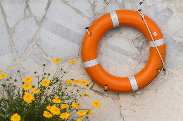 Top view flowers and life buoy