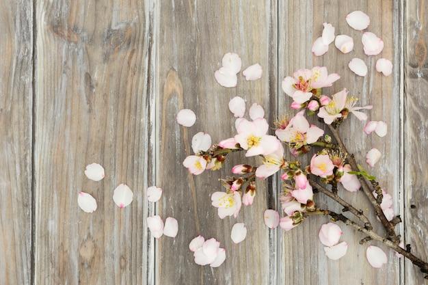 木製の背景にトップビューの花