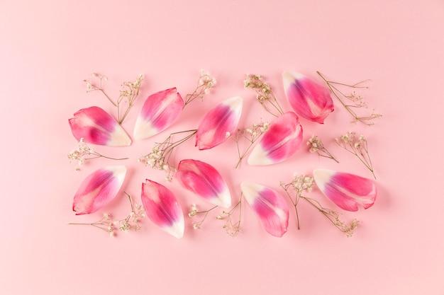 Top view flowers petals
