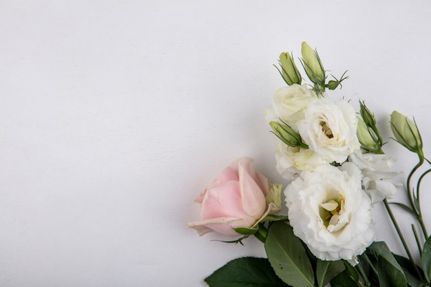 Top view of flowers on white background with copy space