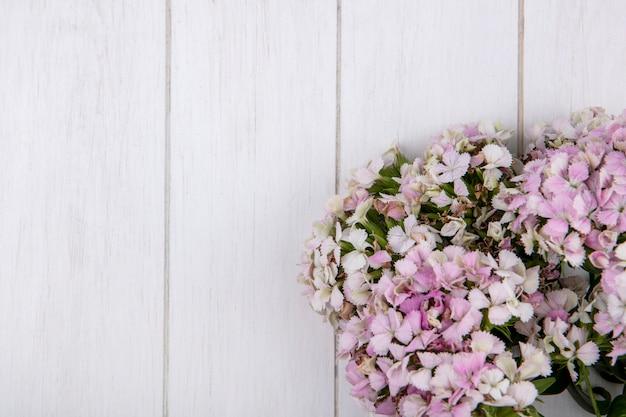 Vista dall'alto di fiori su una superficie bianca