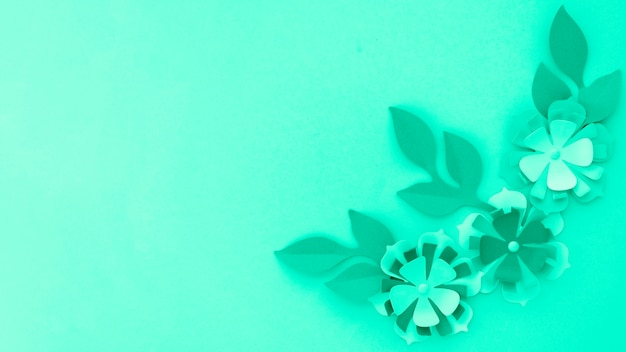 Top view of flowers with leaves and copy space