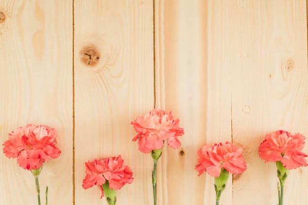 Top view flowers on wooden background with copy space