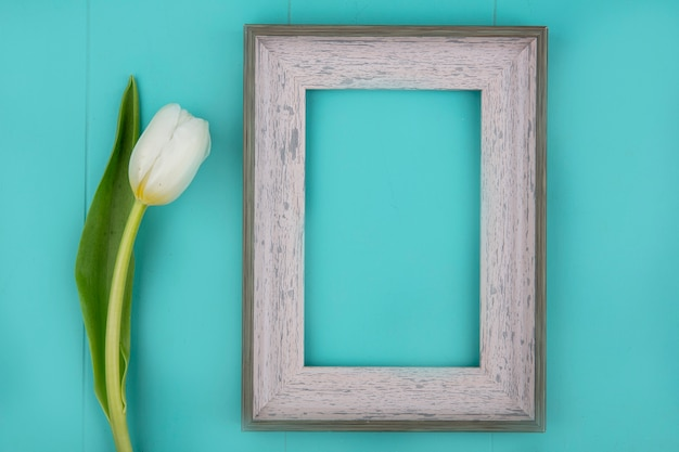 Top view of frame and flower on blue background with copy space