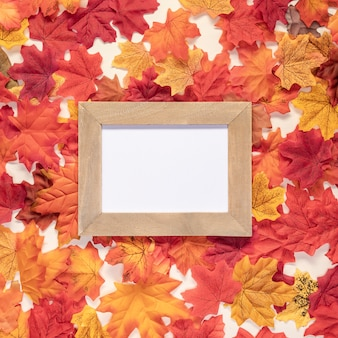 Top view frame on leaves background