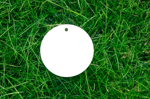 Top view of a frame made of green spring grass and one white cardboard round tag for sale with copy space for logo. natural concept.