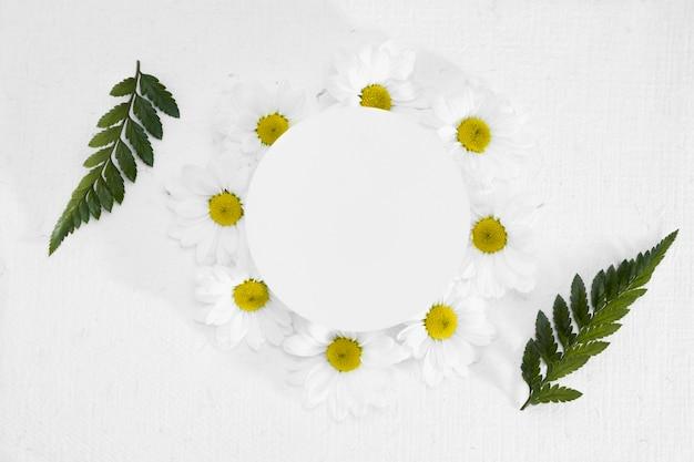 데이지로 만든 상위 뷰 프레임 및 잎