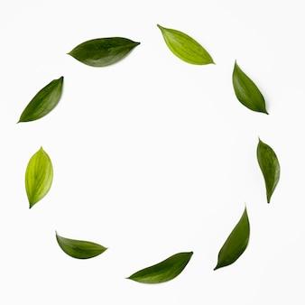 Рамка сверху из листьев