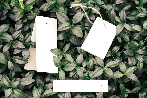 Top view of frame made of periwinkle leaves and tags for clothes of different shapes with copy space...