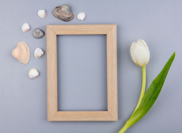 Top view of frame with flower and seashells around on gray background with copy space