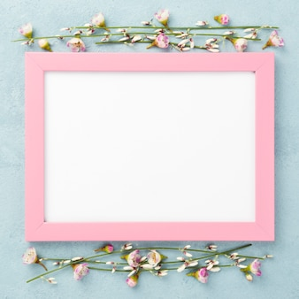 Top view frame with flowers branches