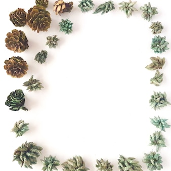 Top view of frame with green dried leaves pine cone branches