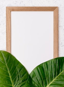 Top view frame with green leafs