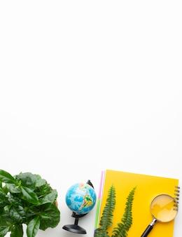 식물과 노트북 상위 뷰 프레임