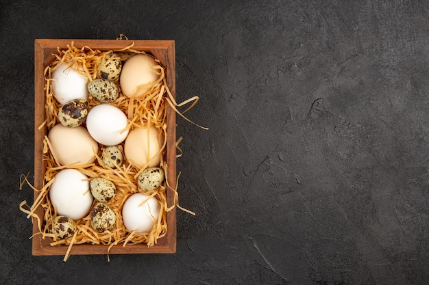 상위 뷰 어두운 배경에 상자 안의 신선한 닭고기 달걀 사진 음식 식사 아침 식사 동물 색상 아침 차 여유 공간