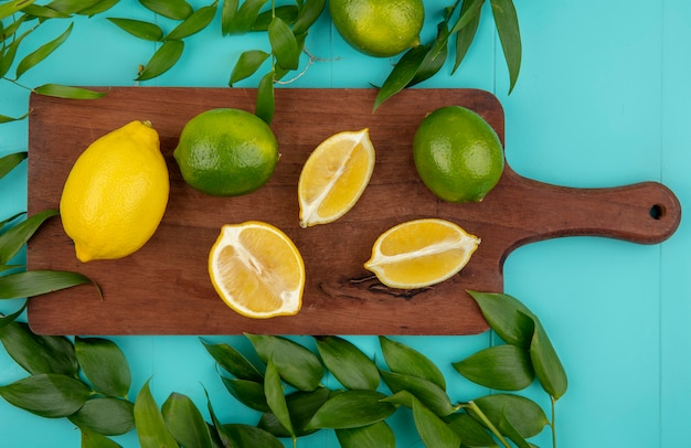 Top view of fresh and colorful lemons on wooden kitchen board with leaves isolated on blue