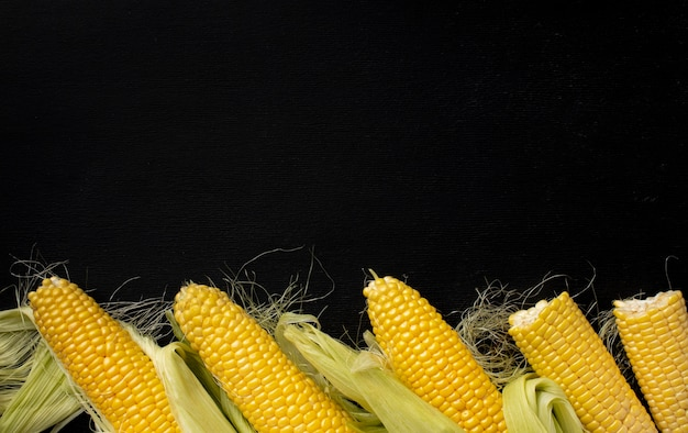 Top view fresh corn composition with copy space